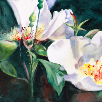 """Painting titled """"Roses sauvages"""" by Adyne Gohy, Original Art, Watercolor"""