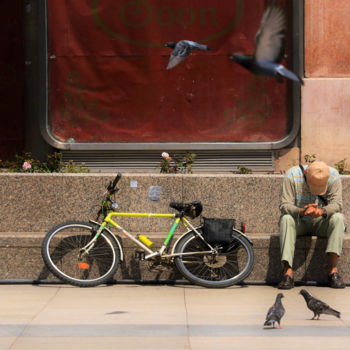 """Photography titled """"Pigeons at ban Josi…"""" by Alen Gurovic, Original Art, Non Manipulated Photography"""