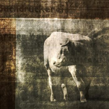 Photography, digital photography, expressionism, artwork by Philippe Berthier