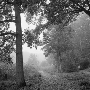 Photography, analog photography, land art, artwork by Frédéric Duchesnay