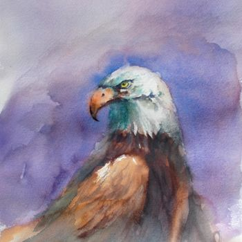 """Painting titled """"bald eagle"""" by Giorgio Gosti, Original Art, Watercolor"""