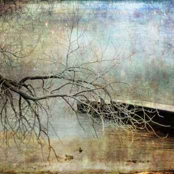 Photography, manipulated photography, expressionism, artwork by Randi Grace Nilsberg