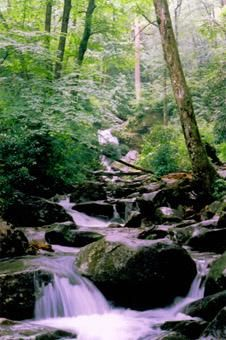 """Photography titled """"Grotto Falls 03"""" by Hinsel Scott, Original Art,"""