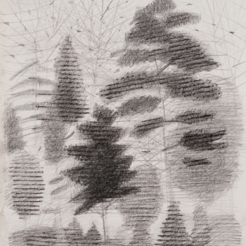 Drawing, graphite, artwork by Irena Luse