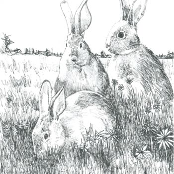 Animal Drawing, ink, illustration, artwork by Micheal O Muirthile