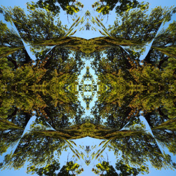 """Digital Arts titled """"Forest Abstract 13"""" by Kenneth Grzesik, Original Art, Digital Painting"""