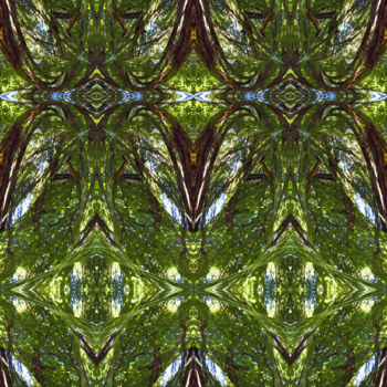 """Digital Arts titled """"Forest Abstract 17"""" by Kenneth Grzesik, Original Art, Digital Painting"""