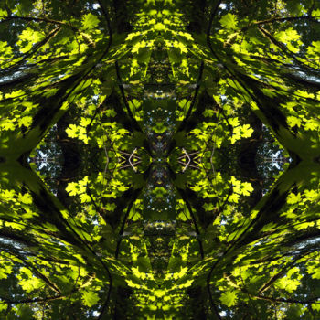 """Digital Arts titled """"Forest Abstract 30"""" by Kenneth Grzesik, Original Art, Digital Painting"""