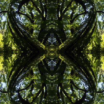 """Digital Arts titled """"Forest Abstract 36"""" by Kenneth Grzesik, Original Art, Digital Painting"""