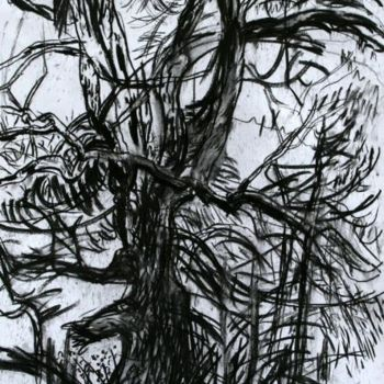 """Drawing titled """"Ash II"""" by Stephen West, Original Art, Other"""