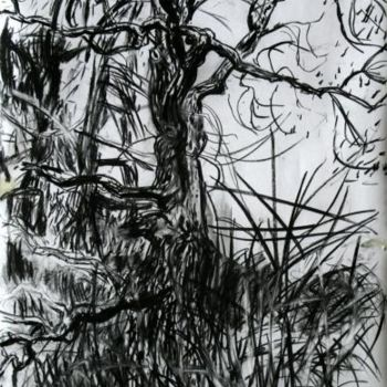 """Drawing titled """"Ash III"""" by Stephen West, Original Art, Other"""