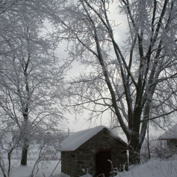 """Photography titled """"WINTERS GRIP"""" by Redreamer, Original Art,"""