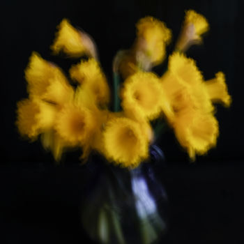 """Photography titled """"Still life with daf…"""" by Yana Yushkevich, Original Art, Digital Photography"""