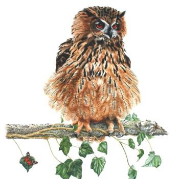 """Painting titled """"Eagle Owl"""" by Zoe Norman, Original Art, Watercolor"""