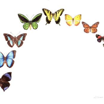 """Painting titled """"Butterfly Rainbow"""" by Zoe Norman, Original Art, Watercolor"""