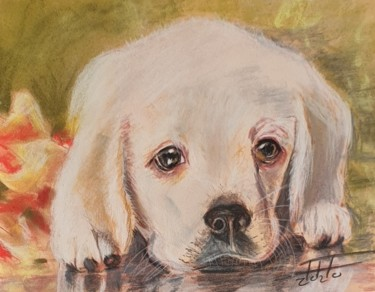 """Painting titled """"Sweet puppy"""" by Adel Fahmi, Original Art, Pastel"""