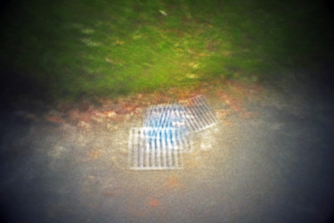 """Photography titled """"Grate Move"""" by Alan Hillyer, Original Art, Digital Photography"""