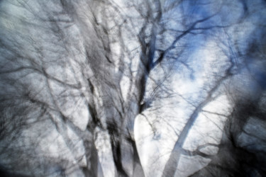"""Photography titled """"Ghost Tree #3"""" by Alan Hillyer, Original Art, Digital Photography"""
