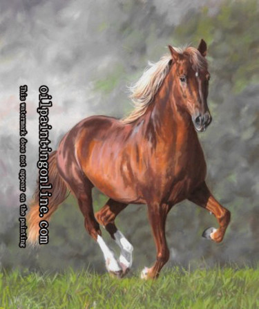 ©2011 by animal-oil-painting