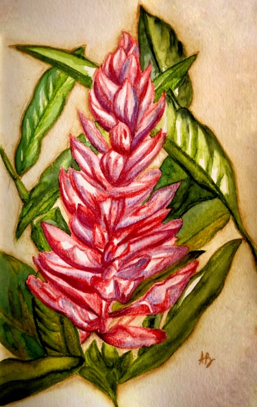 """Painting titled """"Fleur rose exotique"""" by Anne Brigaud, Original Art, Watercolor"""
