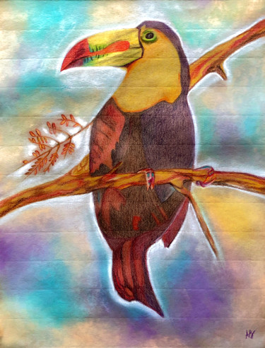 """Painting titled """"Toucan"""" by Anne Brigaud, Original Art, Pencil"""