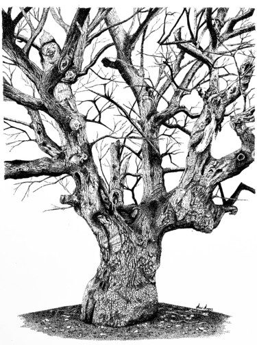 """Drawing titled """"Through the Years"""" by Anni Angus, Original Art, Ink Mounted on Other rigid panel"""