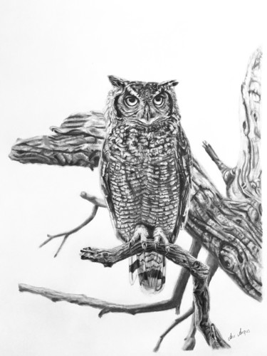 """Drawing titled """"Watching Me, Watchi…"""" by Anni Angus, Original Art, Graphite"""