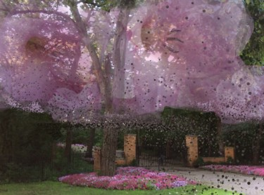 """Photography titled """"Splendid Blossoms"""" by Artistry By Ajanta, Original Art, Digital Photography"""