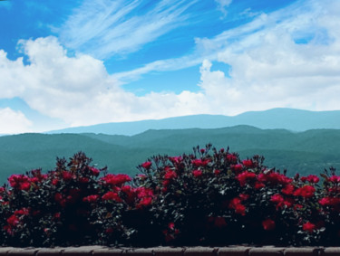 """Photography titled """"Mountain Flowers"""" by Artistry By Ajanta, Original Art, Digital Photography"""