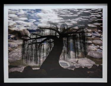 """Photography titled """"Crying Nature"""" by Anna Sowinska, Original Art, Digital Photography"""