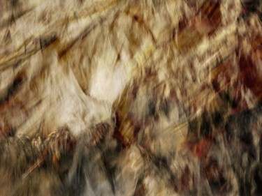 ©2015 by Philippe Berthier