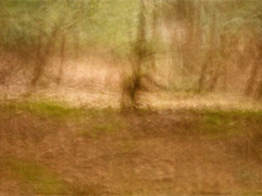©2016 by Philippe Berthier