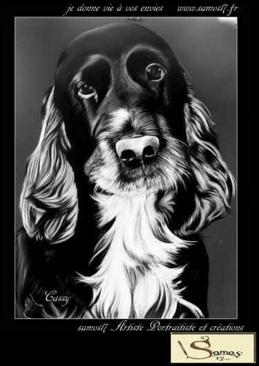 Portrait dessin chien cocker au pastel samos17 portraitiste - Dessin de cocker ...