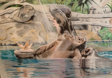"""Drawing titled """"Happy Hippo"""" by Carole Mcalpine, Original Art, Pencil Mounted on Other rigid panel"""