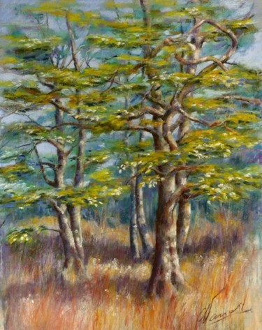25.6x17.7 in ©2011 by Catherine Vanel
