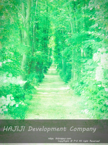 """Photography titled """"Tall trees and gree…"""" by Cédric Hajiji, Original Art, Manipulated Photography"""