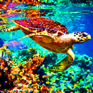 """Painting titled """"turtle-hd-tune-fina…"""" by Claude Guillaubey, Original Art,"""