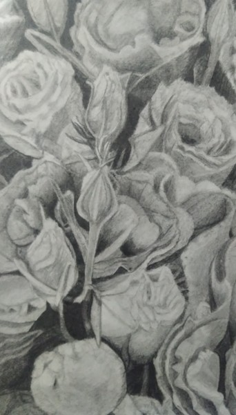 """Drawing titled """"The various roses"""" by Eduard Strelets, Original Art, Pencil"""