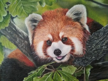 """Painting titled """"Small red panda"""" by Елена Козютенко, Original Art, Oil"""