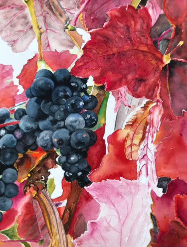 """Painting titled """"Grapes with red lea…"""" by Ewa Helzen, Original Art, Watercolor"""