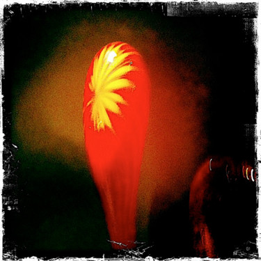 """Photography titled """"Chihuly show OKC"""" by Jim Williams, Original Art, Digital Photography"""