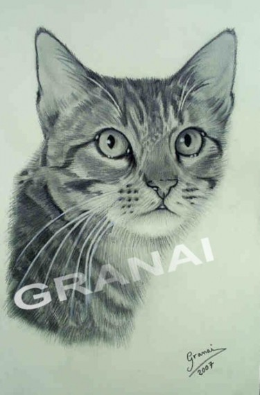 11.4x8.3 in ©2007 by Granai