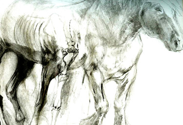 """Drawing titled """"cheval3"""" by Grégory Geng, Original Art, Pencil"""