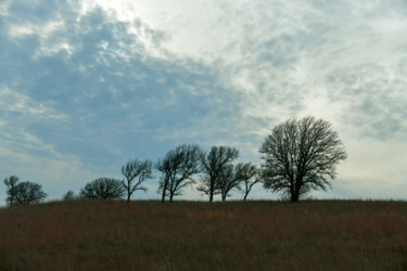 """Photography titled """"Plains"""" by Igzotic, Original Art, Digital Photography"""