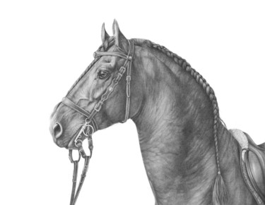 """Drawing titled """"Friesian horse port…"""" by Irynahorseart, Original Art, Graphite"""