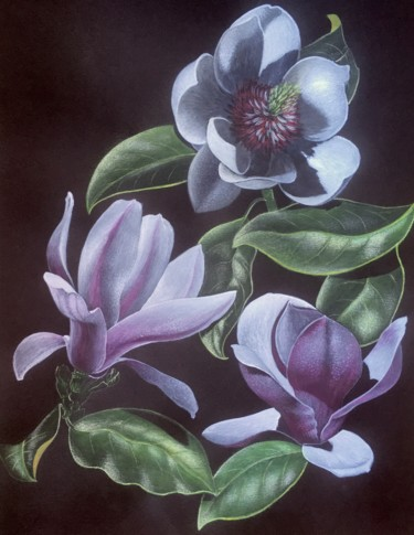 """Painting titled """"Magnolias fleurs"""" by Isabelle Molinard, Original Art, Acrylic"""