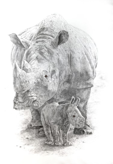 Animal Drawing, pencil, artwork by Jacek Ciecierski