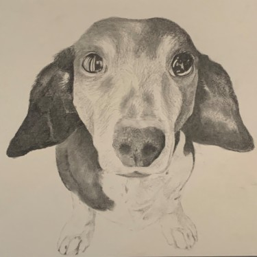 """Drawing titled """"Wise"""" by Jacob Haws, Original Art, Charcoal"""