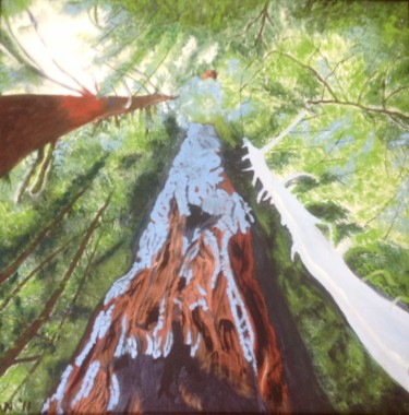 """Painting titled """"Old Growth Douglas…"""" by Jan Wall, Original Art, Ink"""
