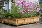 Mobile and Fixed Raised Bed Planters